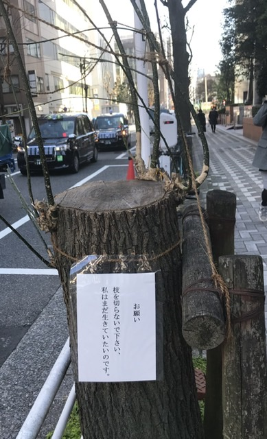 f:id:wakuwaku60:20200218151525j:plain