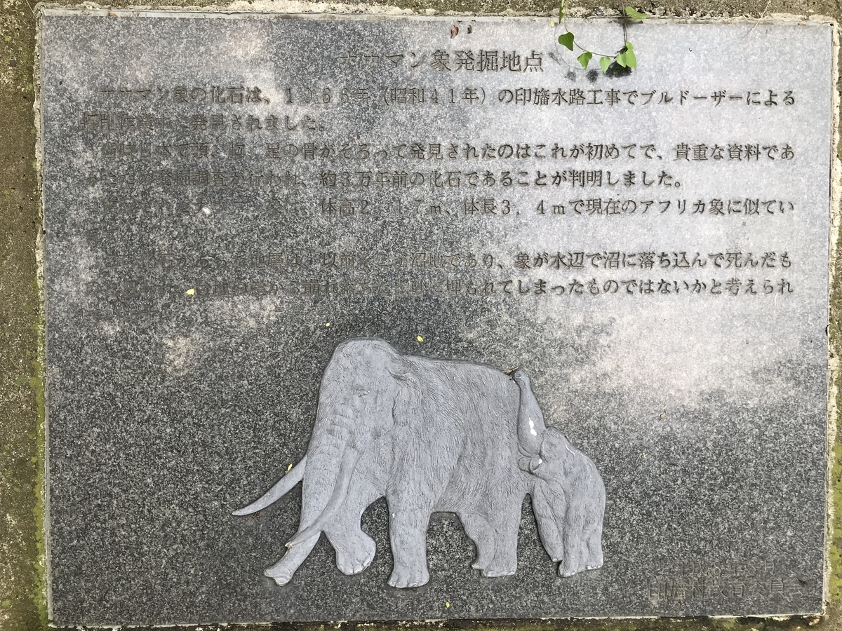 f:id:wakuwaku60:20201108183112j:plain