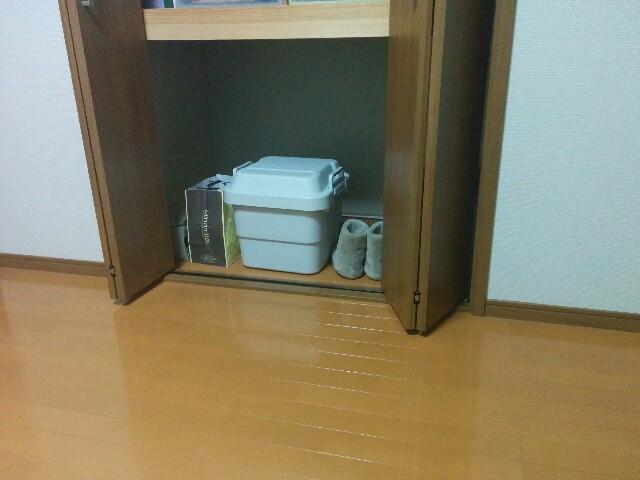 f:id:wakuwakusetuyaku:20160531214942j:image