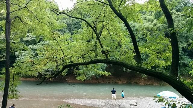 f:id:wakuwakusetuyaku:20160829214605j:plain