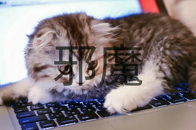 f:id:wakuwakusetuyaku:20161022124900j:plain