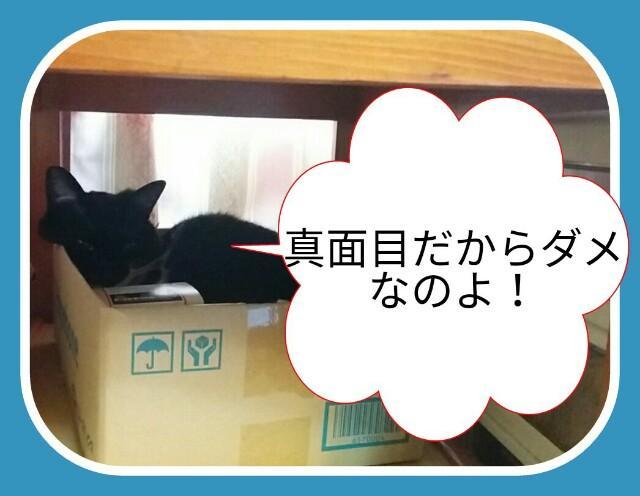 f:id:wakuwakusetuyaku:20170519222650j:image