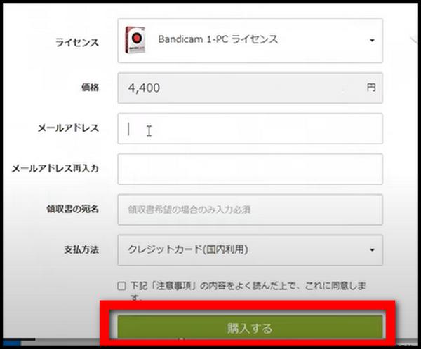 クレジットカード、メールアドレス、支払い方法などを選んで「購入する」ボタンをクリックします。