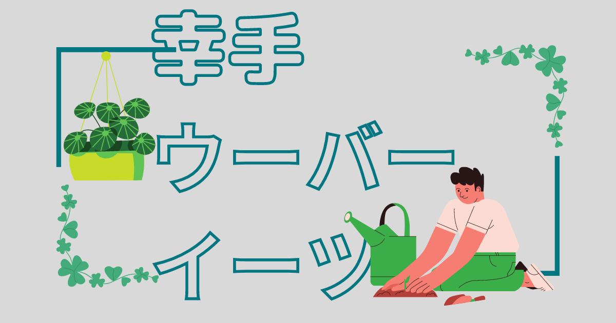 f:id:wakuwakusetuyaku:20210217102350p:image