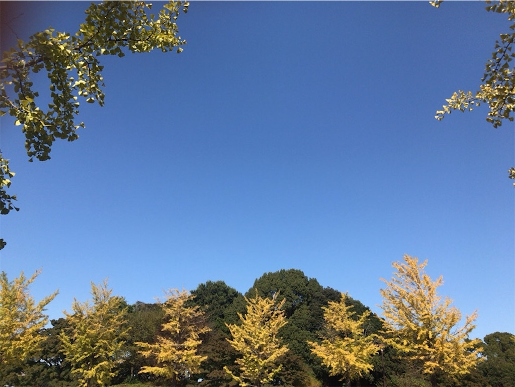 f:id:wakuwakushincha:20201031163622j:image
