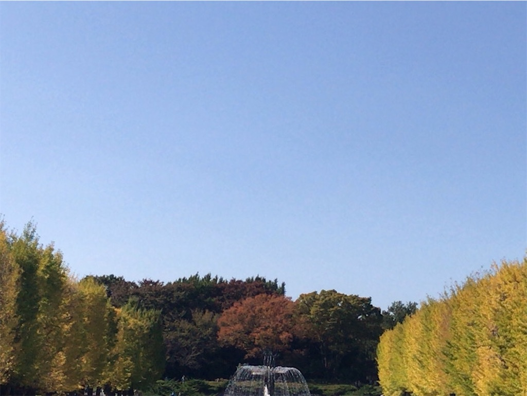 f:id:wakuwakushincha:20201031165113j:image