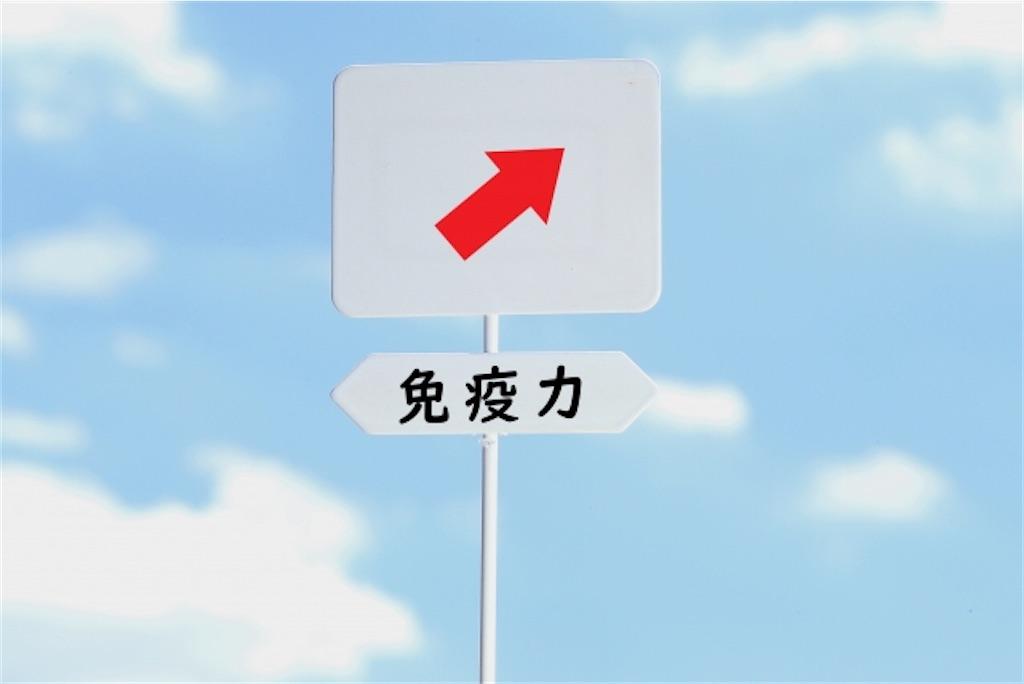 f:id:wakuwakushincha:20201102230508j:image