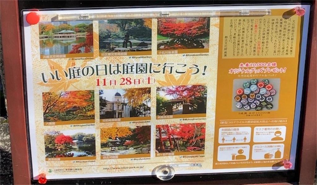f:id:wakuwakushincha:20201128141025j:image