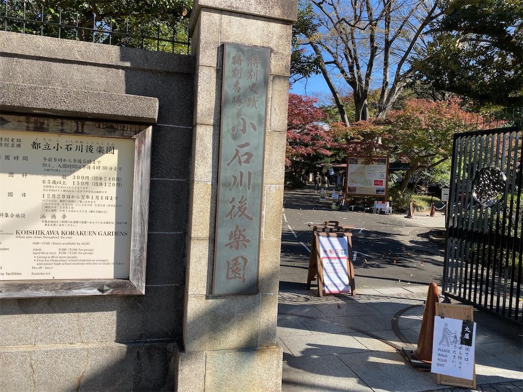 f:id:wakuwakushincha:20201128141630j:image