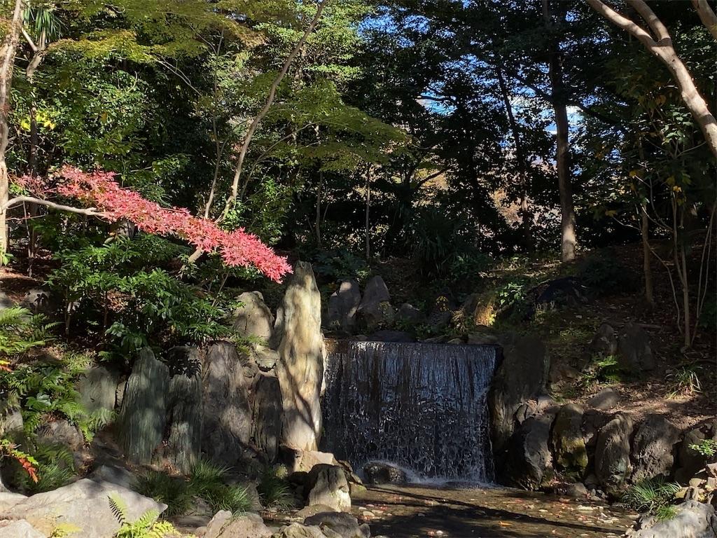 f:id:wakuwakushincha:20201128173054j:image