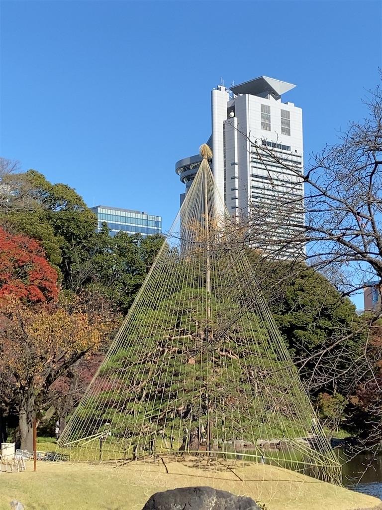 f:id:wakuwakushincha:20201128174140j:image