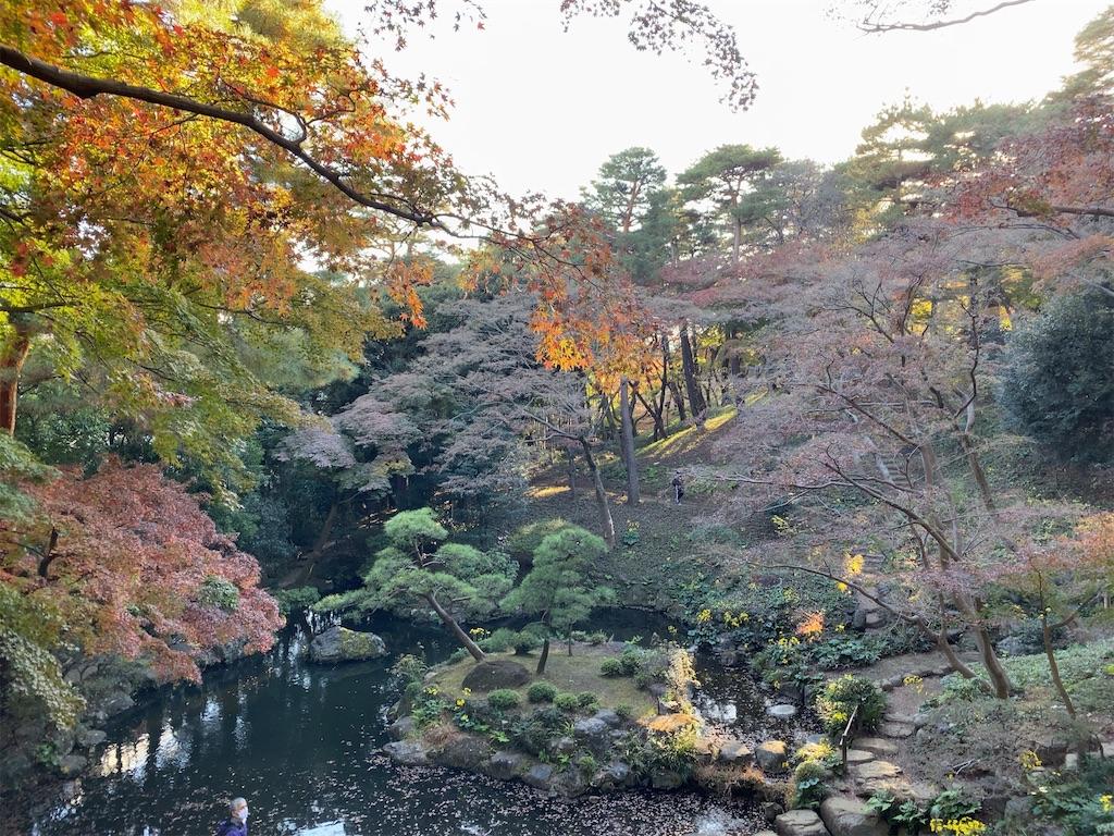 f:id:wakuwakushincha:20201128203922j:image