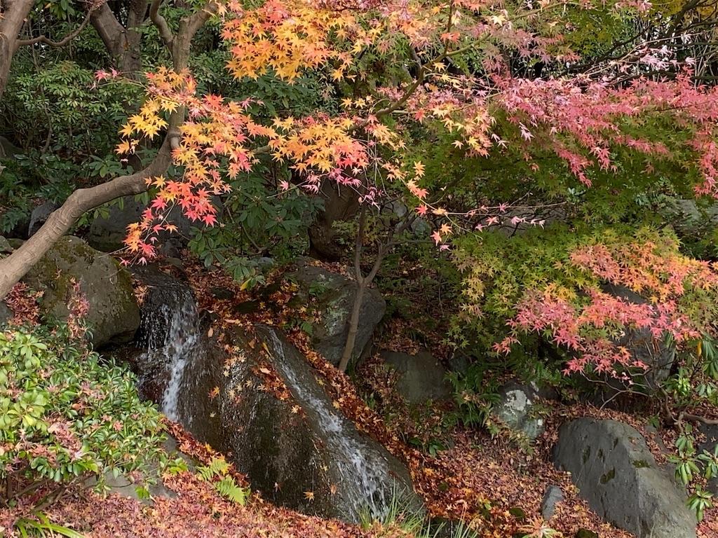 f:id:wakuwakushincha:20201219222349j:image
