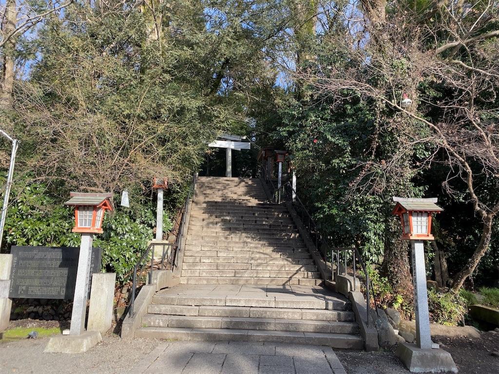 f:id:wakuwakushincha:20210125180725j:image