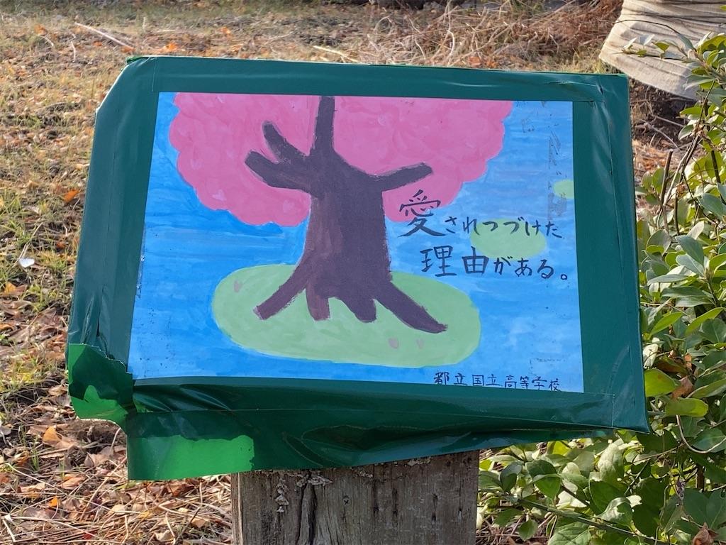 f:id:wakuwakushincha:20210125203622j:image