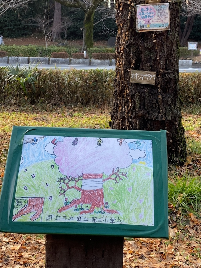 f:id:wakuwakushincha:20210125203634j:image