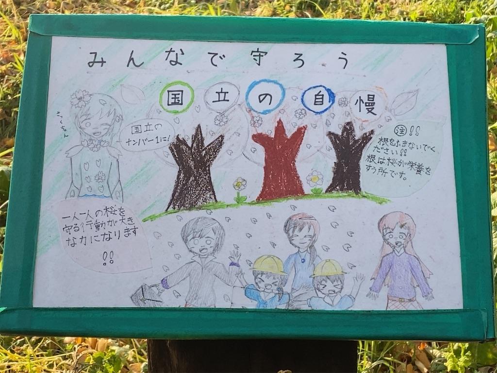 f:id:wakuwakushincha:20210125203638j:image