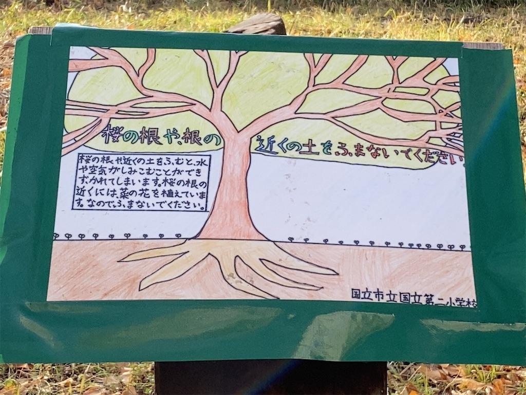 f:id:wakuwakushincha:20210125203641j:image