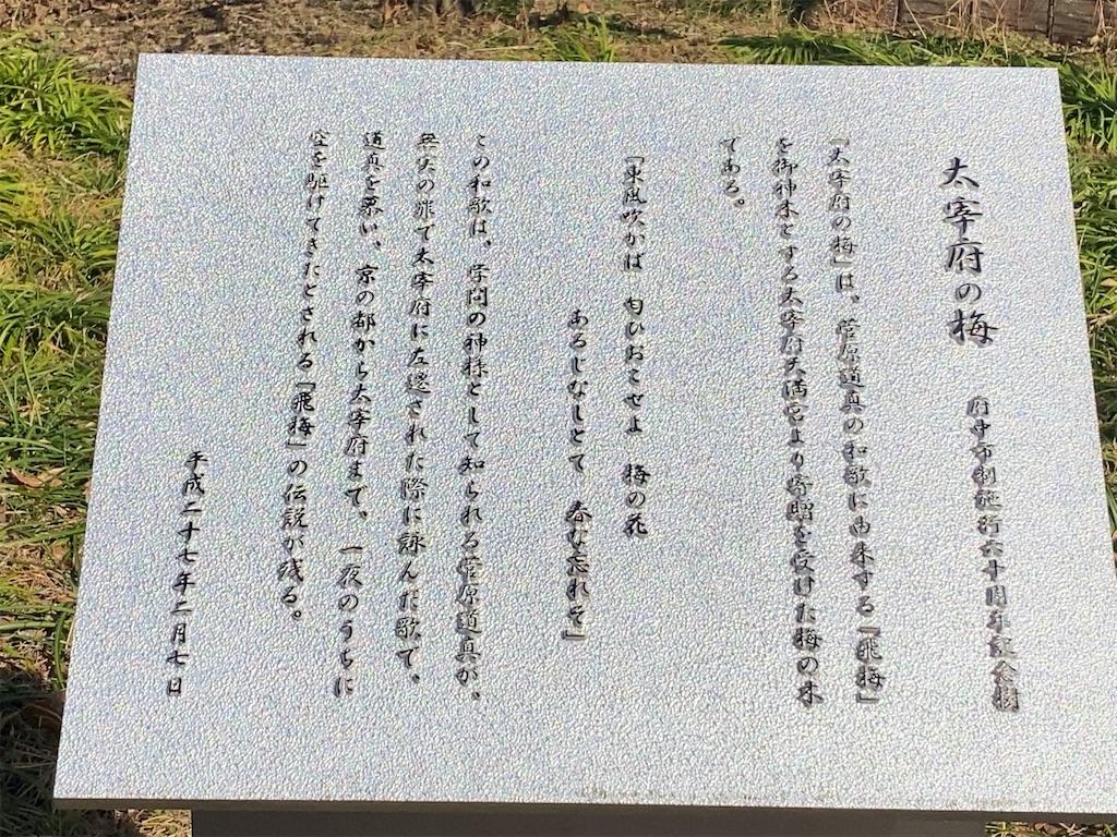 f:id:wakuwakushincha:20210201191256j:image