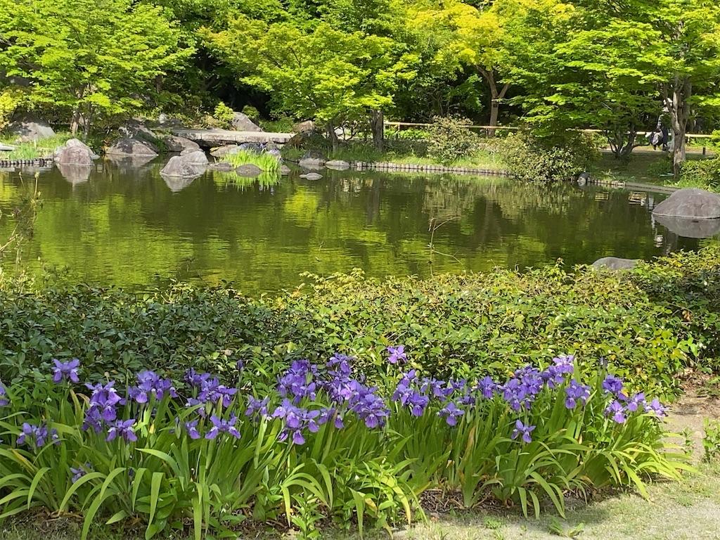 f:id:wakuwakushincha:20210427203720j:image