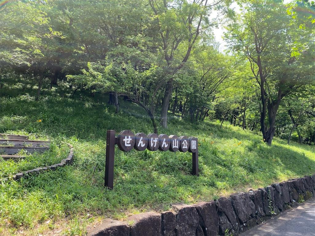 f:id:wakuwakushincha:20210501185353j:image