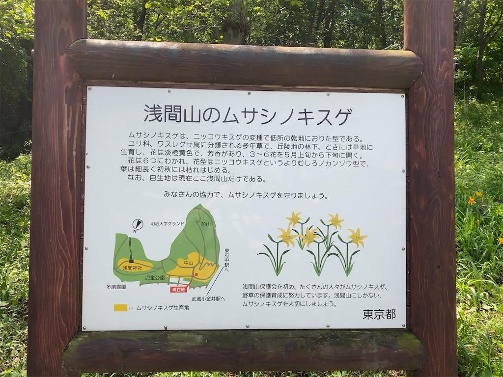 f:id:wakuwakushincha:20210501185625j:image