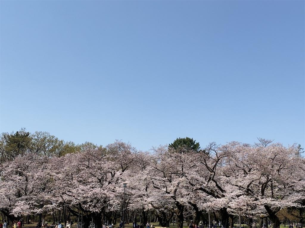 f:id:wakuwakushincha:20210505102604j:image