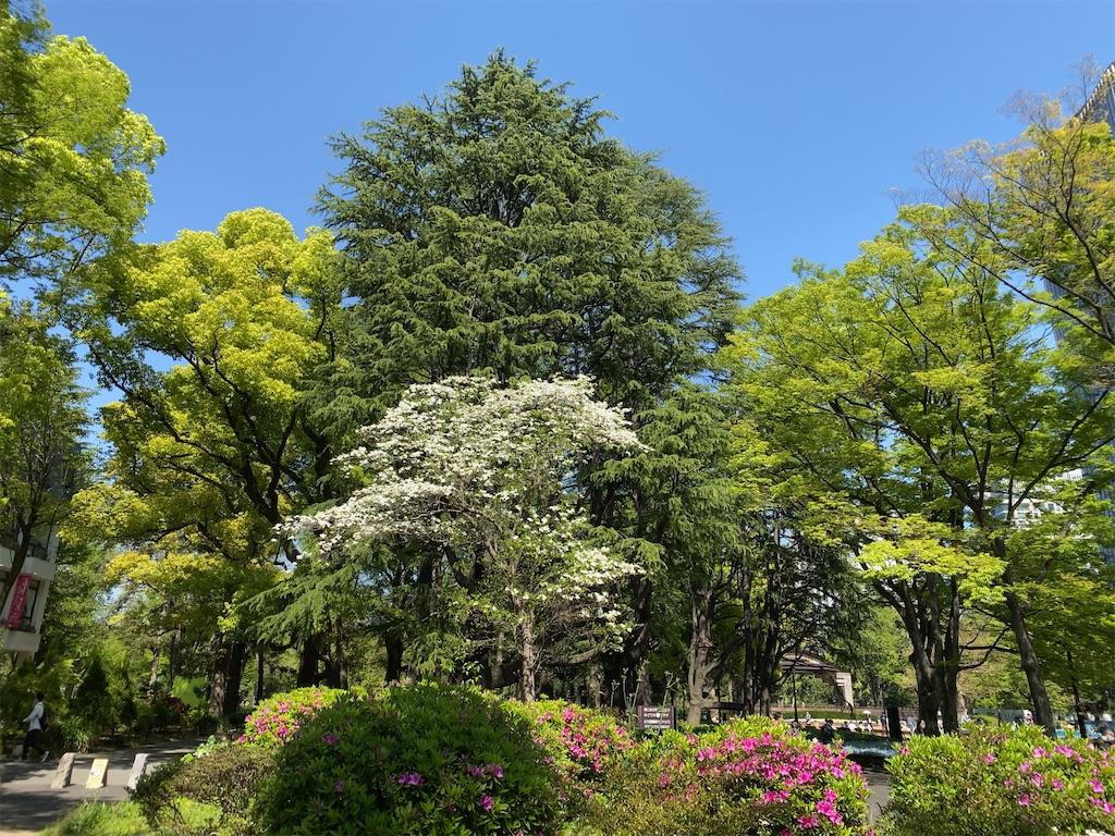 f:id:wakuwakushincha:20210505173534j:image