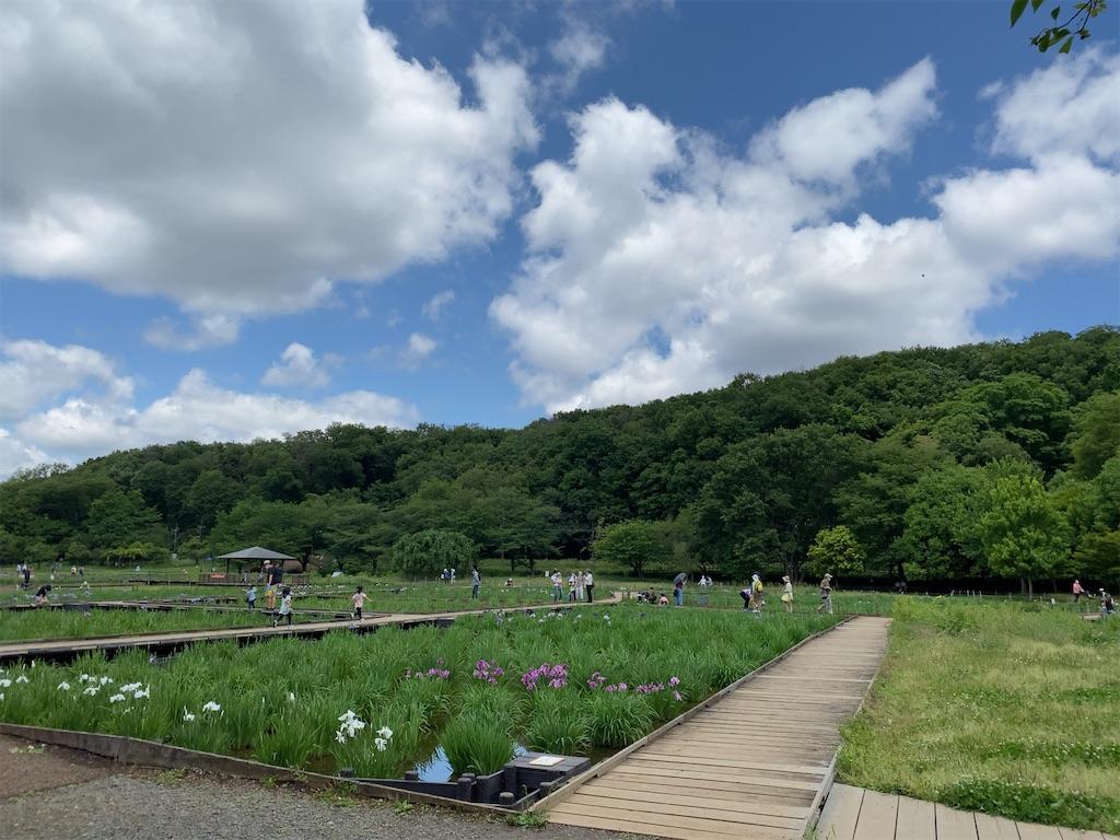 f:id:wakuwakushincha:20210526155824j:image