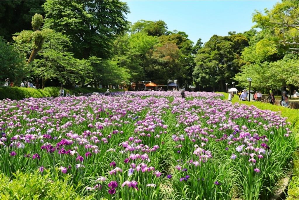 f:id:wakuwakushincha:20210527073633j:image