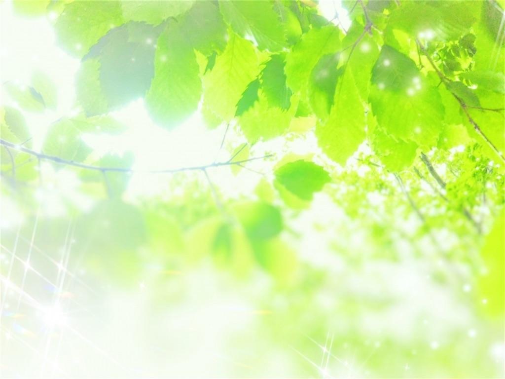 f:id:wakuwakushincha:20210611125303j:image