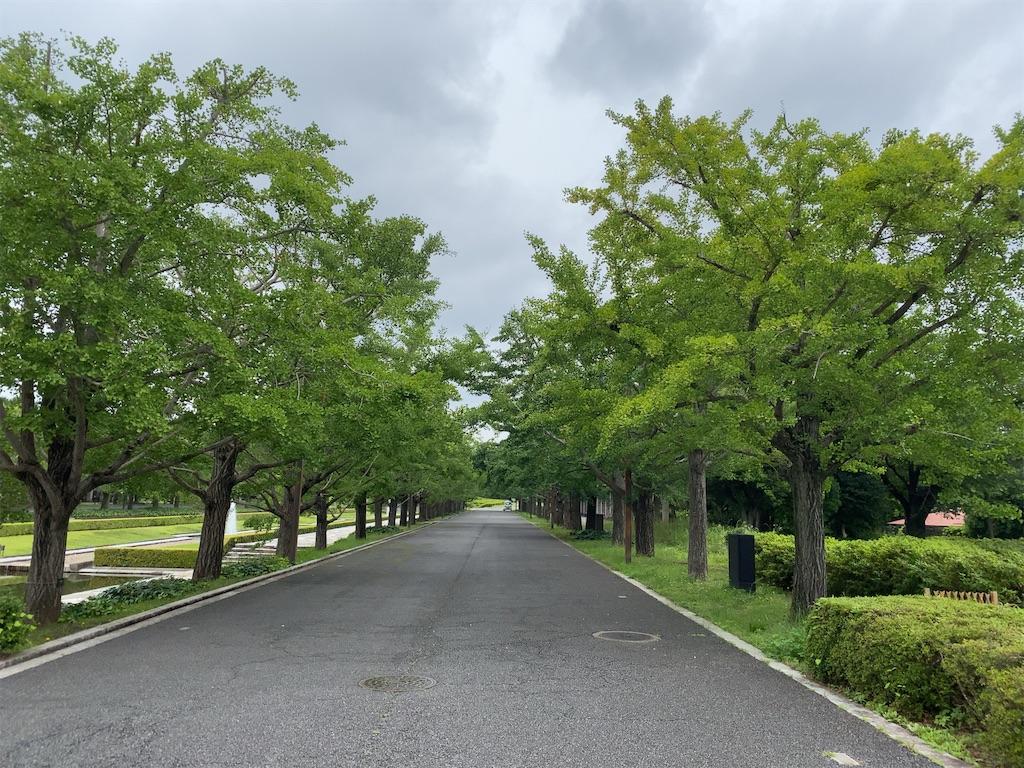 f:id:wakuwakushincha:20210630133310j:image