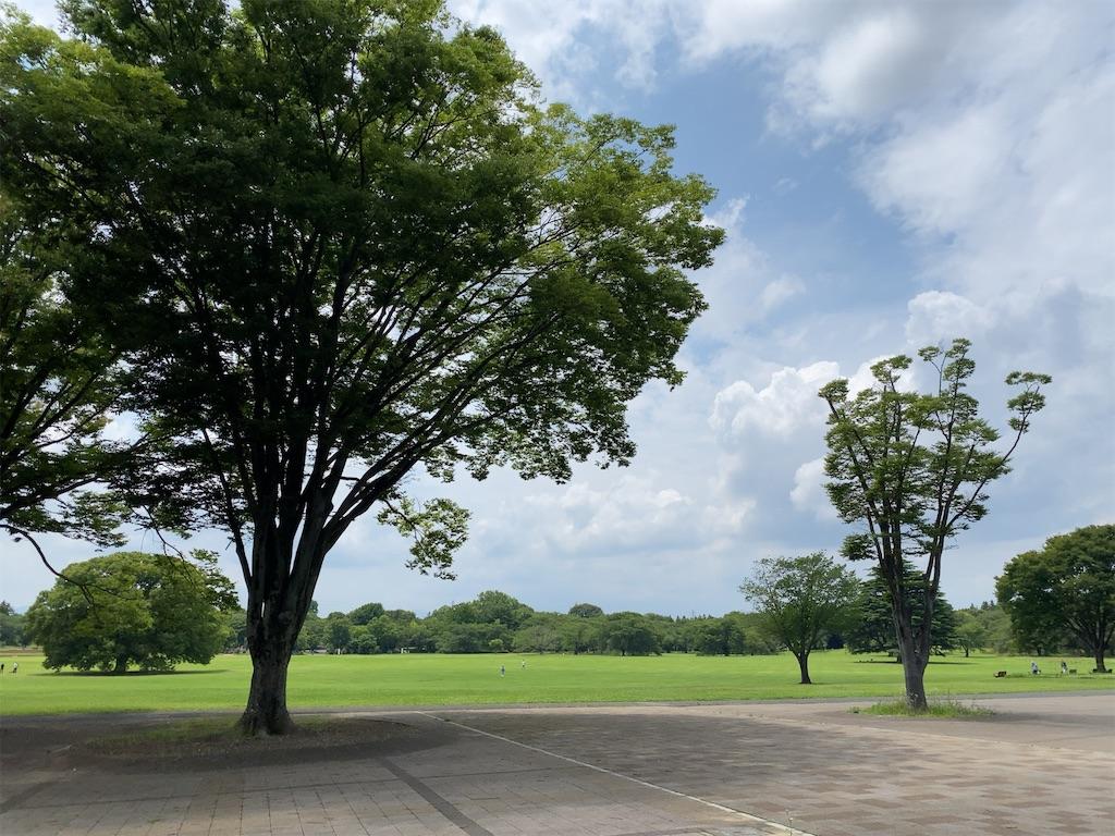 f:id:wakuwakushincha:20210630184251j:image
