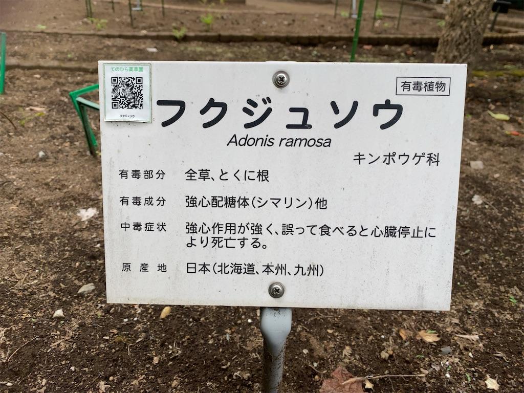 f:id:wakuwakushincha:20210704202351j:image