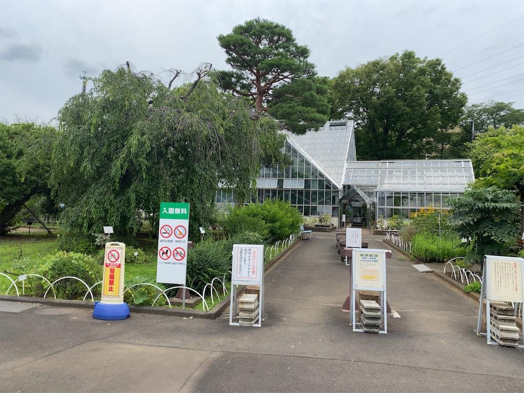 f:id:wakuwakushincha:20210720101725j:image