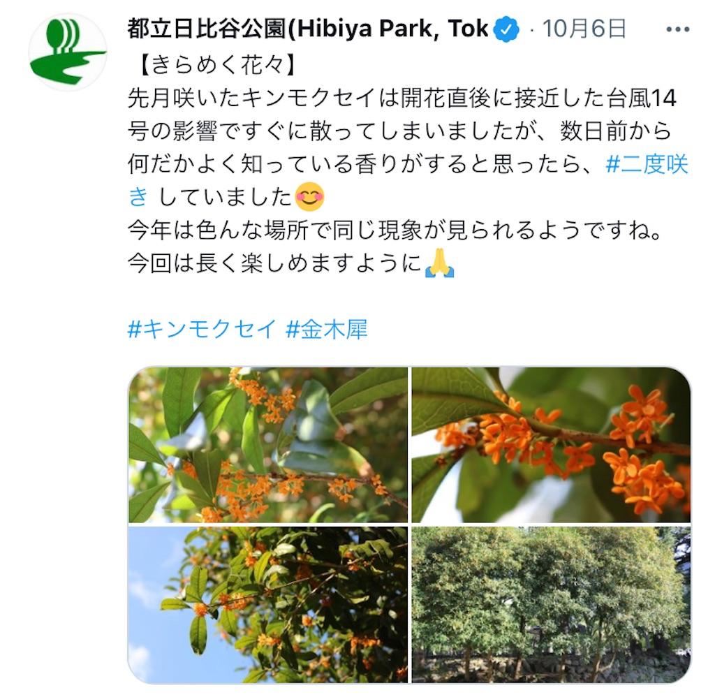f:id:wakuwakushincha:20211008182102j:image