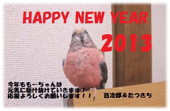 f:id:walkingakikusa:20130102001313j:image