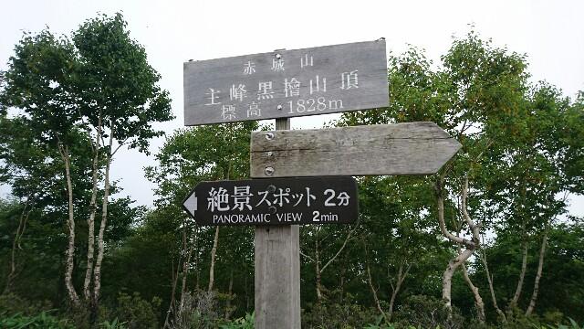 f:id:walkingtkmr:20170807211638j:image
