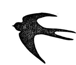 f:id:wamama-mikata:20190228114608j:plain