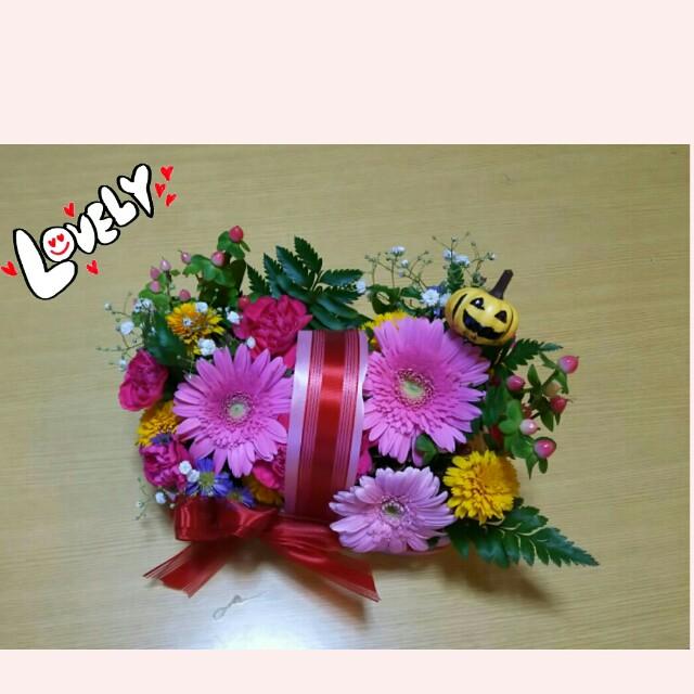 f:id:wan-nyan-family:20170916213405j:image