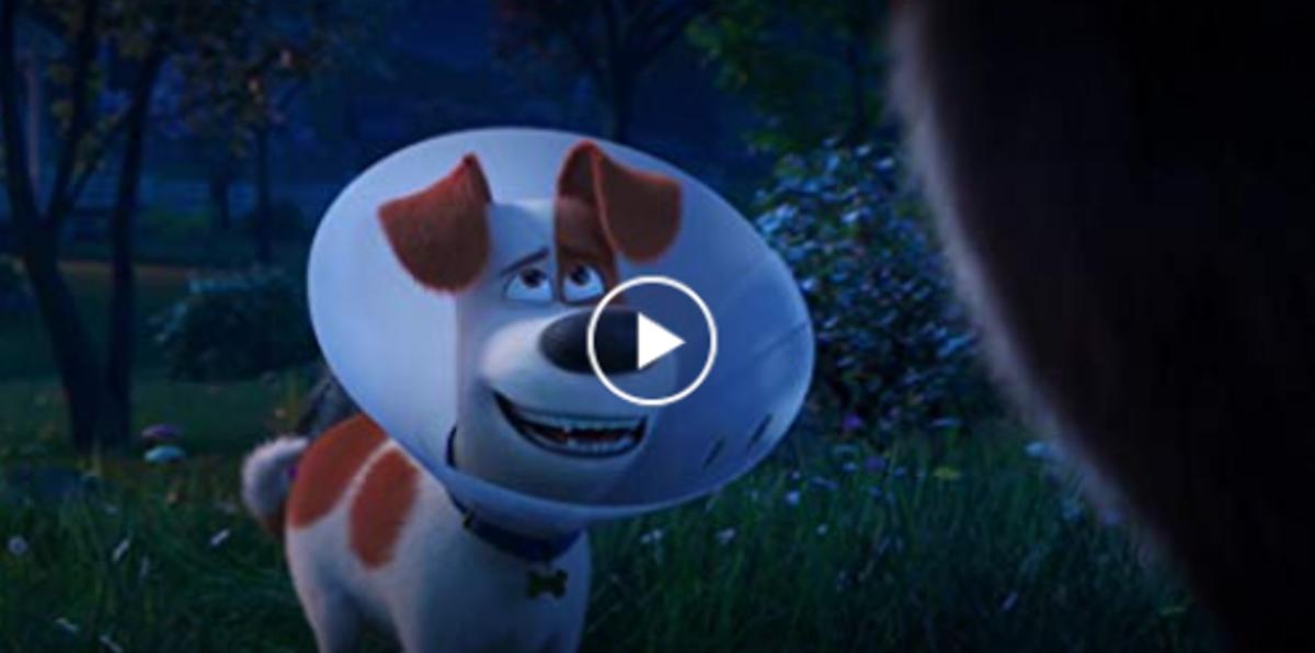secret life of pets 2 full movie free