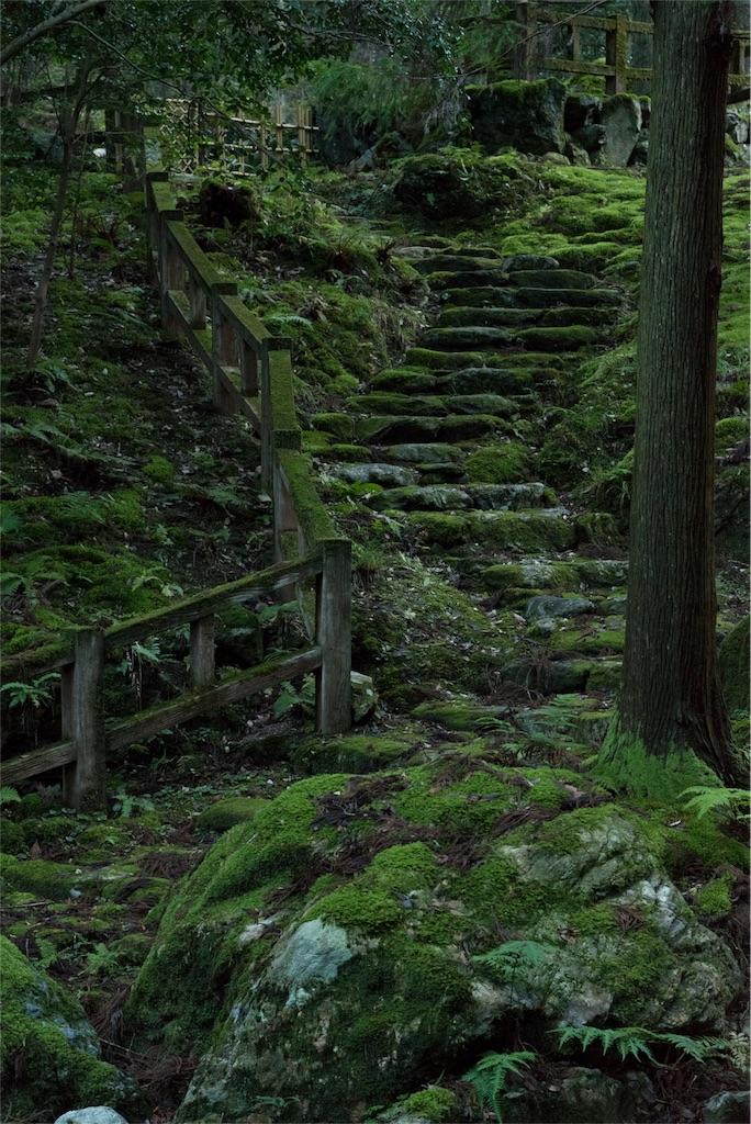 f:id:wanderful-life:20161230102236j:image