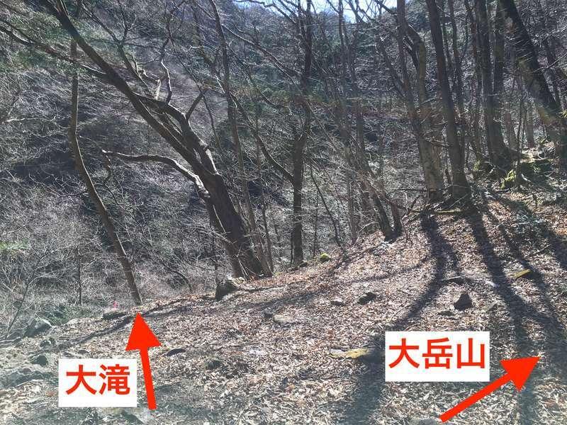 f:id:wane-hiro:20200323215721j:plain