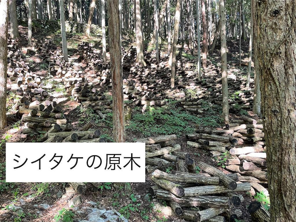 f:id:wane-hiro:20210927230350j:image