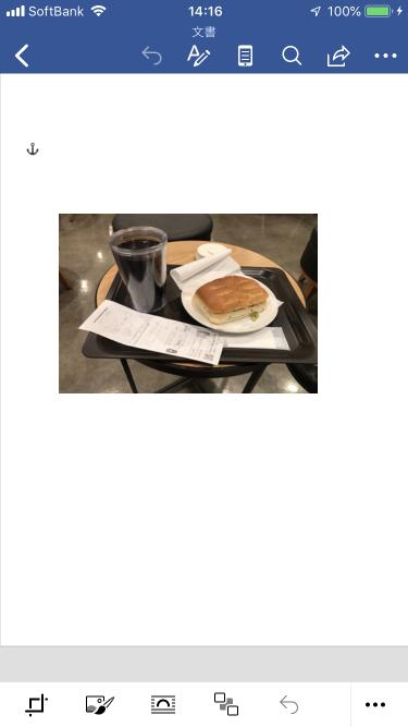 f:id:wanichan:20191126142336p:plain