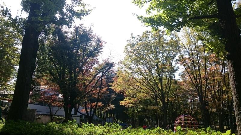 f:id:wanko-daisuki:20161106232032j:plain