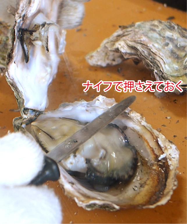 f:id:wanko515:20170316125707j:plain