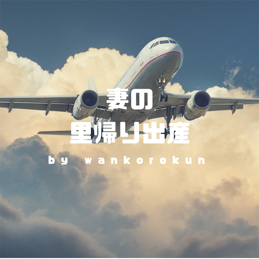 f:id:wankorokun:20190501223311p:image