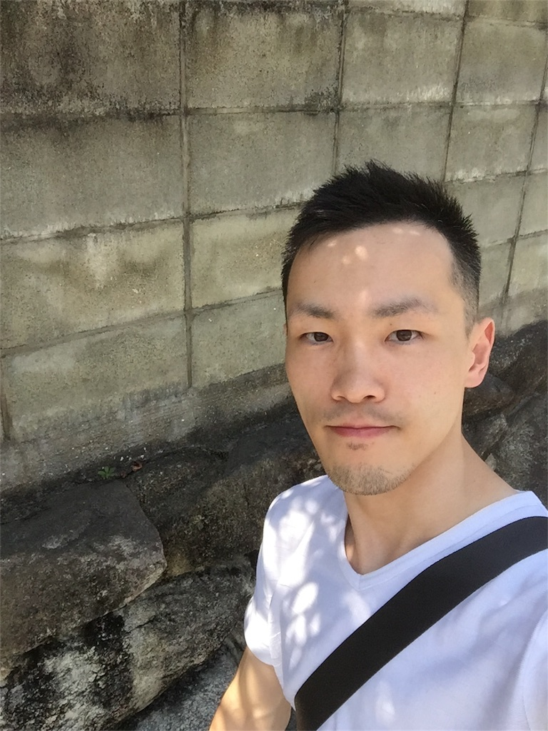 f:id:wanomichi68:20170802160016j:image