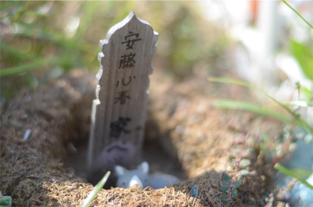 f:id:wanomichi68:20170802234117j:image